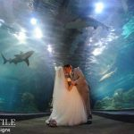 Adventure Aquarium Wedding